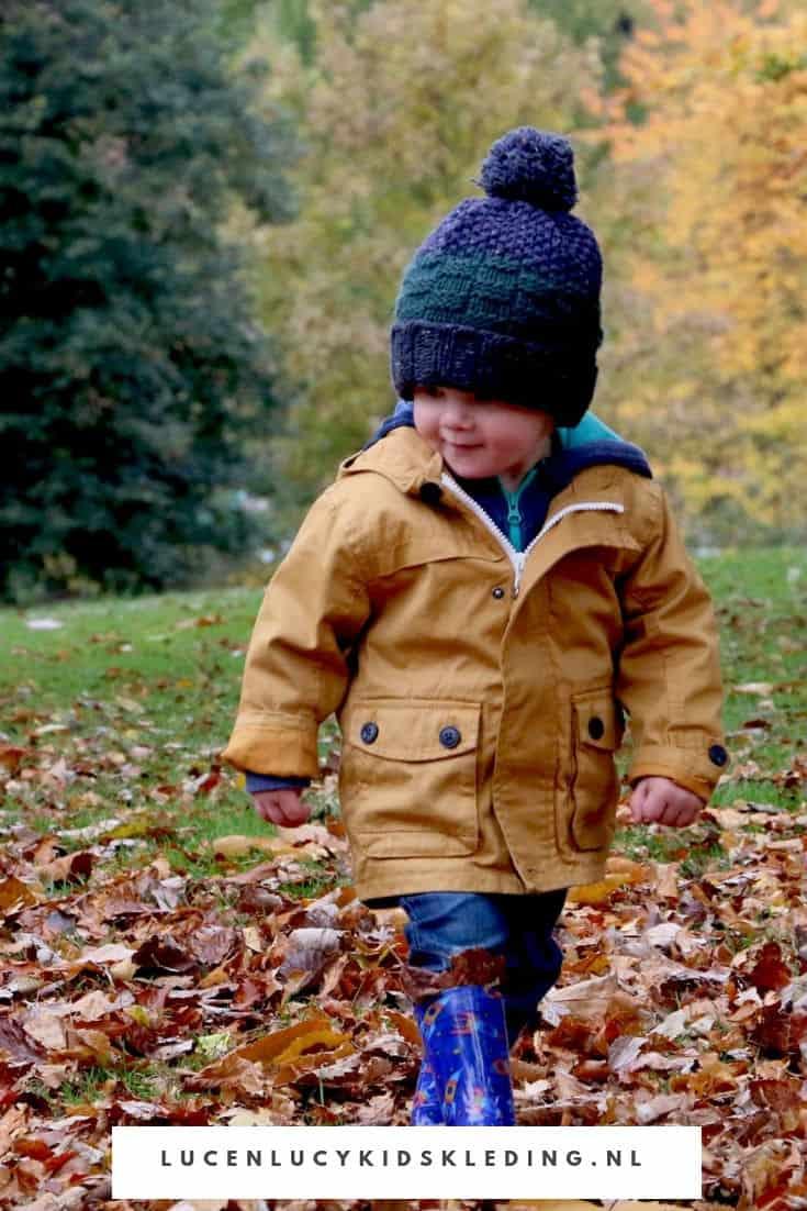 In de herfst buiten in de natuur