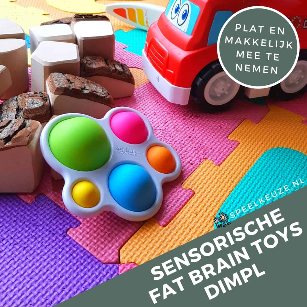 Cutest flat toys for easy carrying Fat Brain Toys Dimpl